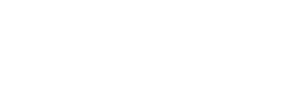 Dutch Digital Health Challenge